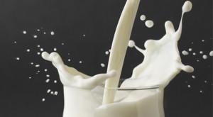 milkmono